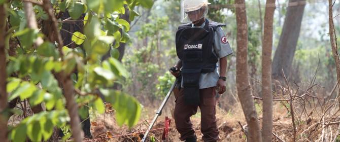 プロジェクト7:P-MAC地雷廃絶キャンペーン