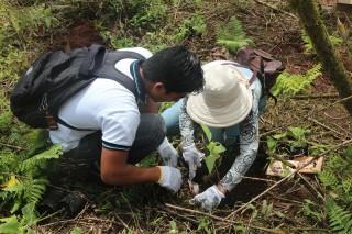 第88回ピースボートで「ガラパゴスの森再生プロジェクト」植林ツアーを実施しました