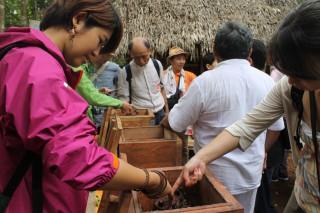 守り継がれるマヤ文化 養蜂を活かした自然保護 ―コスメル