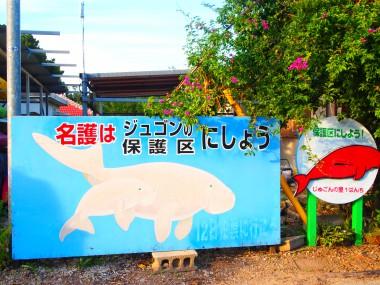 10/5 東京からたった2時間半、沖縄の今~高江と辺野古を訪ねて~