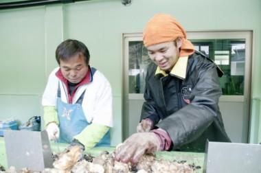 「イマ、ココ プロジェクト。」などピースボート災害ボランティアセンターの活動が各紙に紹介されました