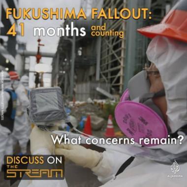 福島と原発の問題について、米国のテレビ討論に川崎哲が出演しました