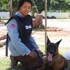 地雷廃絶キャンペーンP-MAC 2008年活動報告書