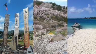 4/1 太平洋の島々から福島へ ~核被害者と語ろう~