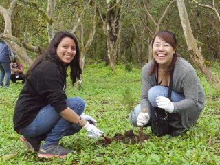 第98回ピースボートで「ガラパゴスの森再生プロジェクト」植林ツアーを実施しました