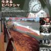 核兵器の廃絶へ、思いを届ける・第100回ピースボートが神戸港に帰港しました