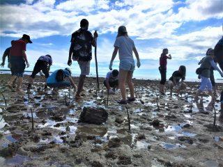 ラウトカのビーチを守るために気候変動と向き合う(第101回ピースボート・フィジー)