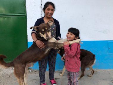 5/3【オンライン勉強会】ペルーを旅して見た風景と働く子どもたちの世界