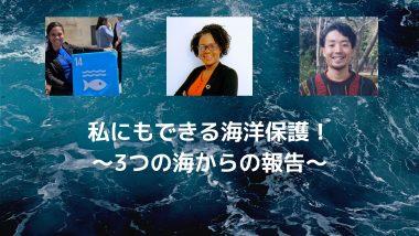 6/16【世界を学ぼう】私にもできる海洋保護!~3つの海からの報告